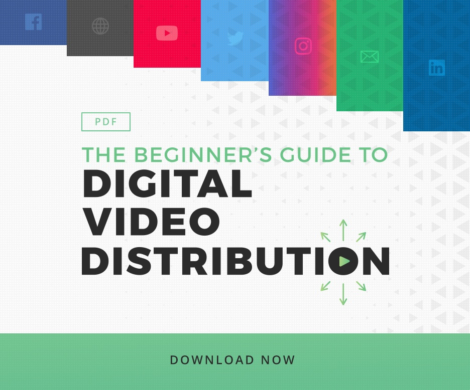 The Beginner's Guide to Digital Video Distribution - PDF Download