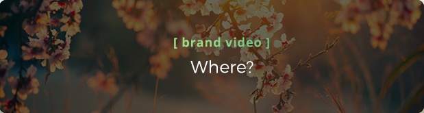 Video Services: Brand Video - Where does it live?