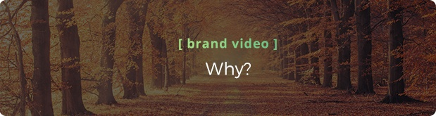 Video Services: Brand Video - Why is it important?
