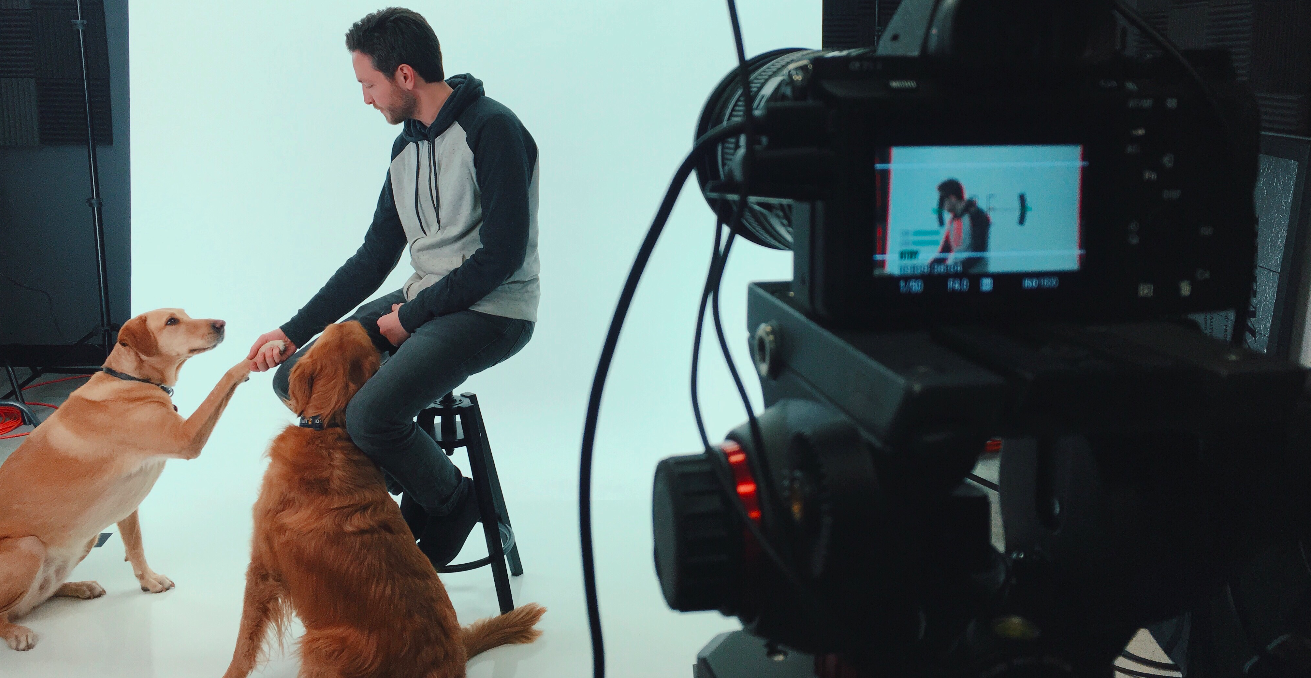 on set with michael and the dogs