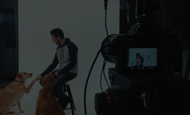 Campaign Management: How To Make Your Video an ROI Generator
